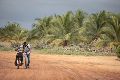 https://imgc.allpostersimages.com/img/posters/african-road-ouidah-benin_u-L-Q1GYLVT0.jpg?artPerspective=n