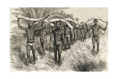 https://imgc.allpostersimages.com/img/posters/african-workers-carrying-elephant-tusks_u-L-PRGI710.jpg?artPerspective=n