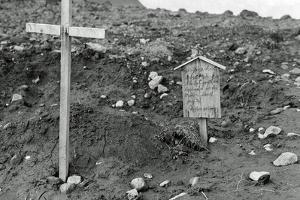 After Allied Troops Had Landed on Kiska Island