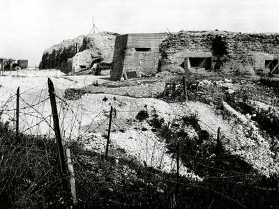 https://imgc.allpostersimages.com/img/posters/after-ww1-the-battlefield-at-fort-vaux-in-verdun-france_u-L-Q107MB40.jpg?p=0