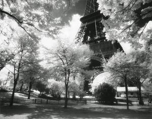 Afternoon in Paris (Eiffel Tower, Park)