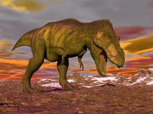 Aggressive Tyrannosaurus Rex Dinosaur Walking in the Desert