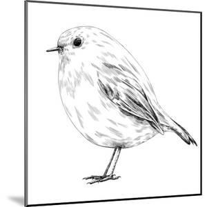 Hand-Drawn Robin by aggressor