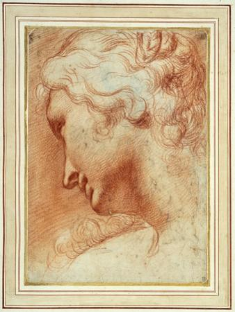 Head of a Young Woman Looking Down over Her Right Shoulder by Agostino Carracci