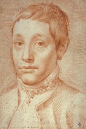 Portrait of His Son, Antonio Carracci, 1592-95 by Agostino Carracci