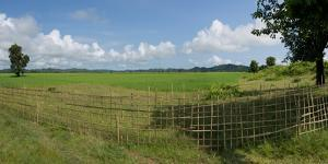 Agricultural field with fence near Mrauk U, Rakhine State, Myanmar