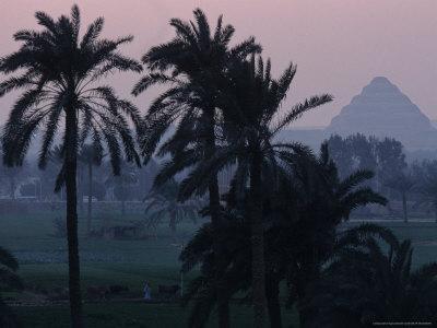 https://imgc.allpostersimages.com/img/posters/agricultural-flood-plain-mudbrick-step-pyramid-3rd-dynasty-saqqara-egypt_u-L-P5839G0.jpg?p=0