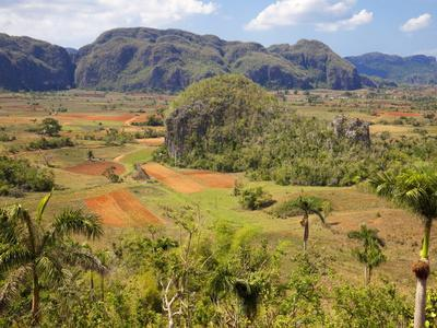 https://imgc.allpostersimages.com/img/posters/agriculture-in-the-dramatic-valle-de-vinales-pinar-del-rio-province-cuba_u-L-PFNVUT0.jpg?p=0