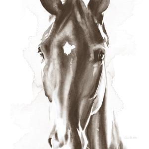 Le Cheval Noir Brown Crop by Aimee Del Valle