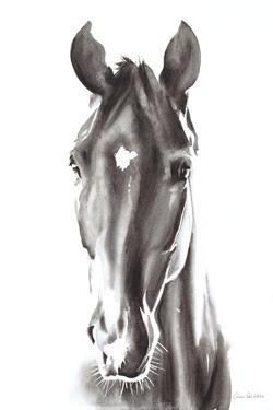 Le Cheval Noir by Aimee Del Valle