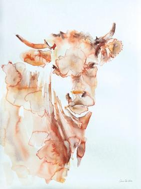 Village Cow by Aimee Del Valle
