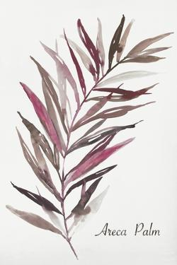 Areca Palm by Aimee Wilson