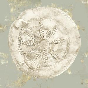 Cone Shells I by Aimee Wilson