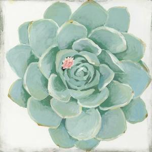 Pastel Succulent I by Aimee Wilson