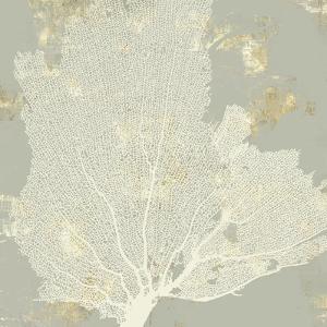 Sea Coral I by Aimee Wilson