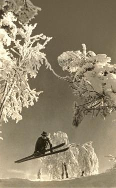 Airborne Skier Amid Frost-Laden Trees
