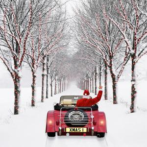 Avenue of Trees with Father Christmas Driving by Ake Lindau and John Daniels