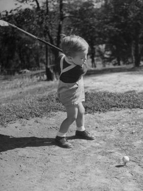 Two Year Old Golfer Bobby Mallick Taking a Swing by Al Fenn
