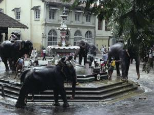 Bathing Elephants in Fountain, Kandy, Sri Lanka by Alain Evrard