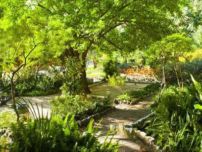 https://imgc.allpostersimages.com/img/posters/alameda-gardens-gibraltar-europe_u-L-PXW4MM0.jpg?p=0