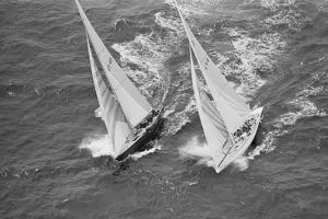 America's Cup Competitors by Alan Altman