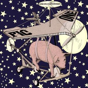 Air Vehicle with Pig and Stars in Background by Alan Baker