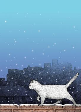 Cat Walking on Wall in Snow by Alan Baker