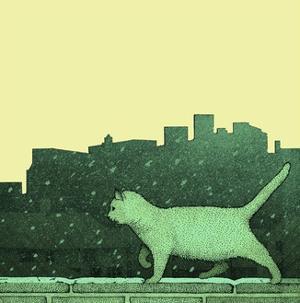 White Cat on Ledge by Alan Baker