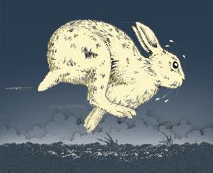 White Rabbit Running in Field by Alan Baker
