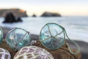 Crescent Beach Shells 16 by Alan Blaustein