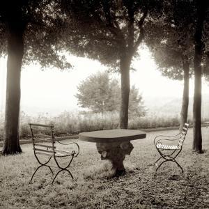 Fiesloe Giardini I by Alan Blaustein