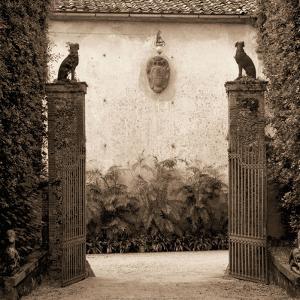 Giardini Ornamentale by Alan Blaustein