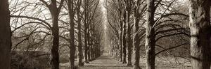 Hamptom Gates Promenade I by Alan Blaustein