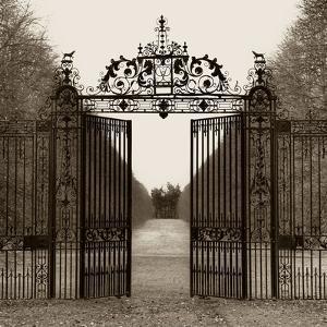 Hampton Gate by Alan Blaustein