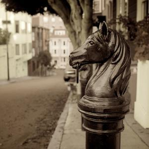 Hitching Post #7 by Alan Blaustein