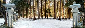 Hokkaido 12 by Alan Blaustein