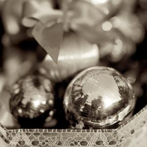 Holiday #3 by Alan Blaustein