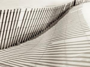 Island Sands #1 by Alan Blaustein