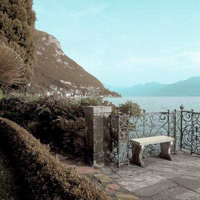 Lake Vista #4 by Alan Blaustein