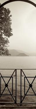 Lombardy #6 by Alan Blaustein
