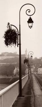 Pont de Chinon by Alan Blaustein