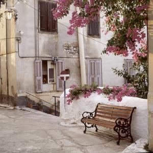 Provence I by Alan Blaustein