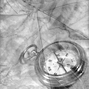 Retro- Compass by Alan Blaustein