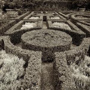Tuscan Giardini I by Alan Blaustein
