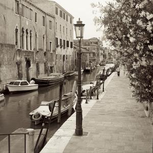 Venezia V by Alan Blaustein