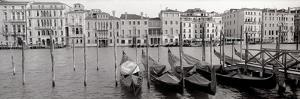 Venice By Day by Alan Blaustein