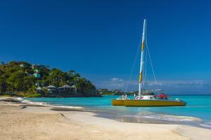 Antigua, Jolly Bay Beach by Alan Copson