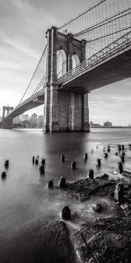 Brooklyn Shores by Alan Copson