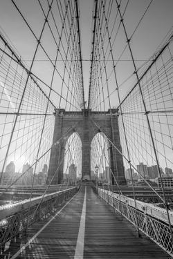 Brooklyn Wires by Alan Copson