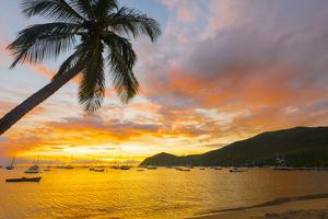 Caribbean, Martinique, Les Anse D'Arlet, Grand Anse Beach by Alan Copson